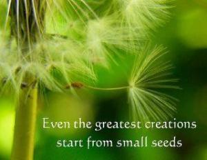Even-the-greatest-creations-start-from-small-seeds