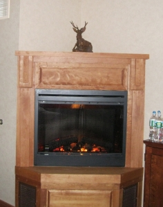 Fireplace. Complete with water bottle photo bomb