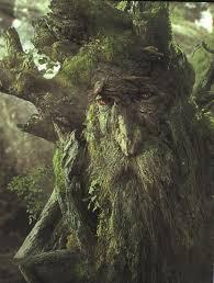 tolkien-trees